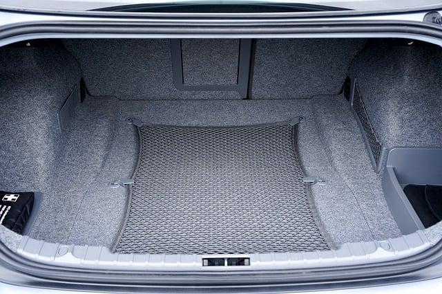 trunk-2464979_640.jpg